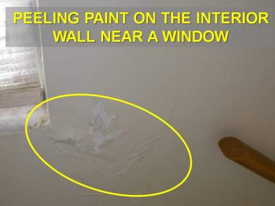 Window Leak with Peeling Wall Paint