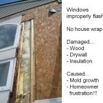 Window Leak Case Study 1