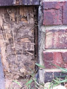 brick house with wood rot